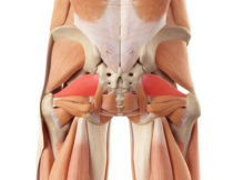 piriformis muscle release