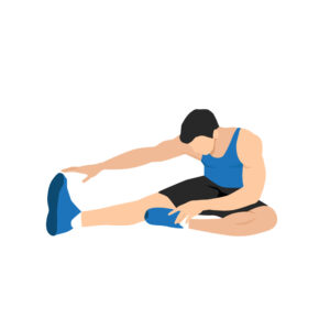 stretch hamstrings